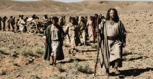 Bible_Exodus_37880447-P